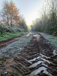 Greenway farmtrack morning