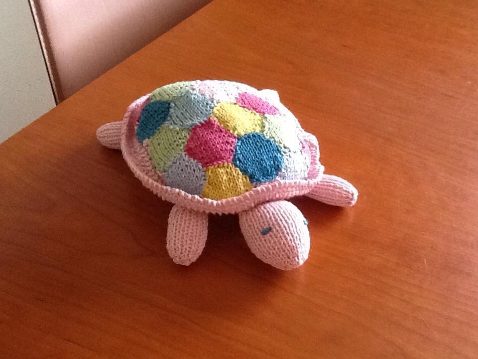 tortoise (1)